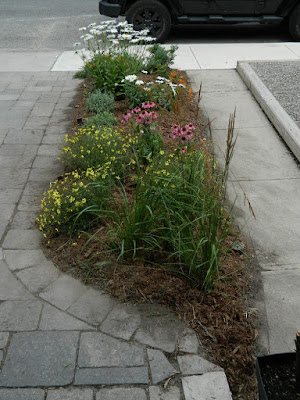 Leslieville front garden installation after Paul Jung Toronto Gardening Services