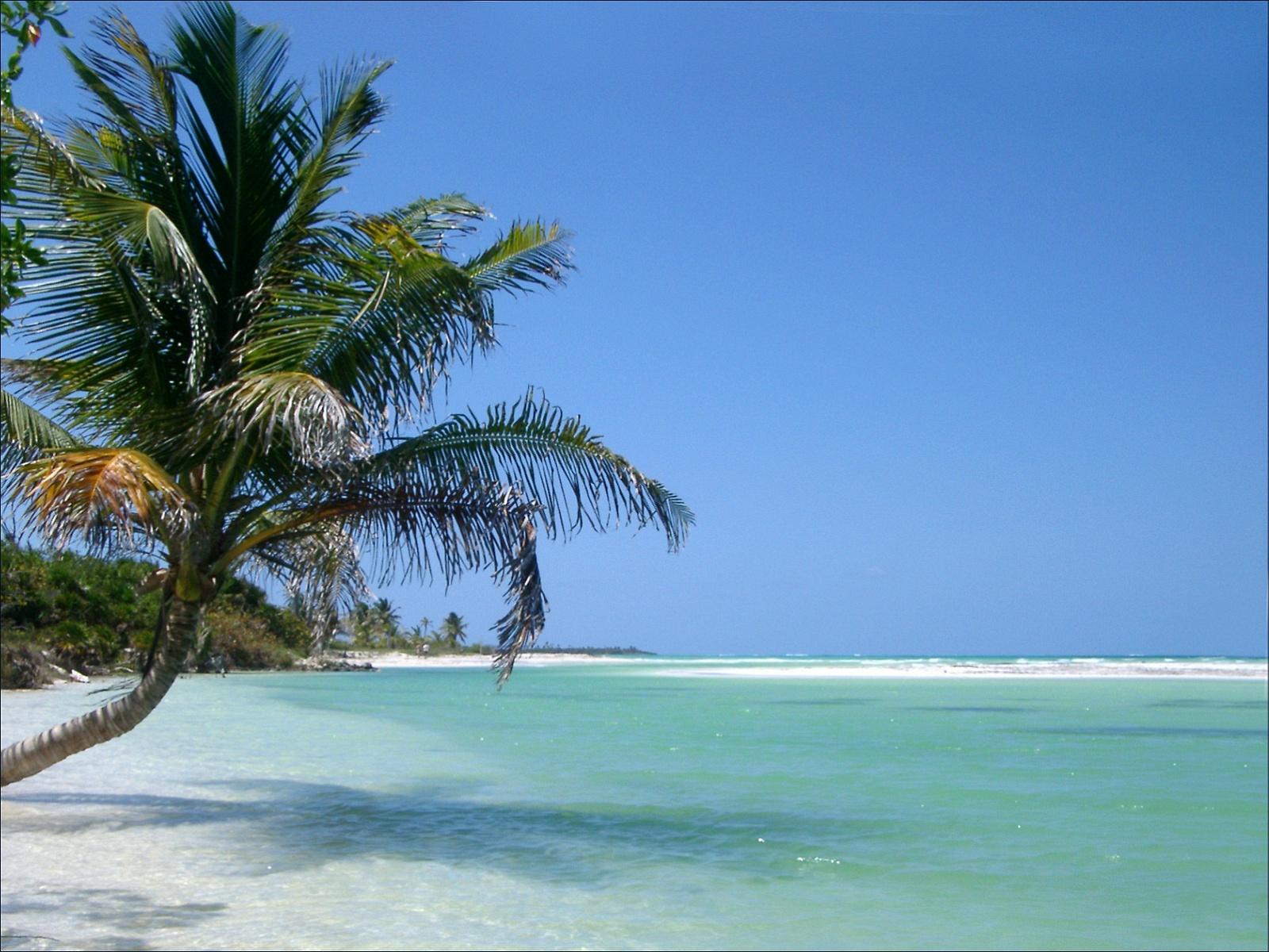 http://3.bp.blogspot.com/-o-Ck8MEuySk/UHZ8uMeFBEI/AAAAAAAAImU/fpgU1qVyLCk/s1600/beach-wallpaper-hd-43.jpg