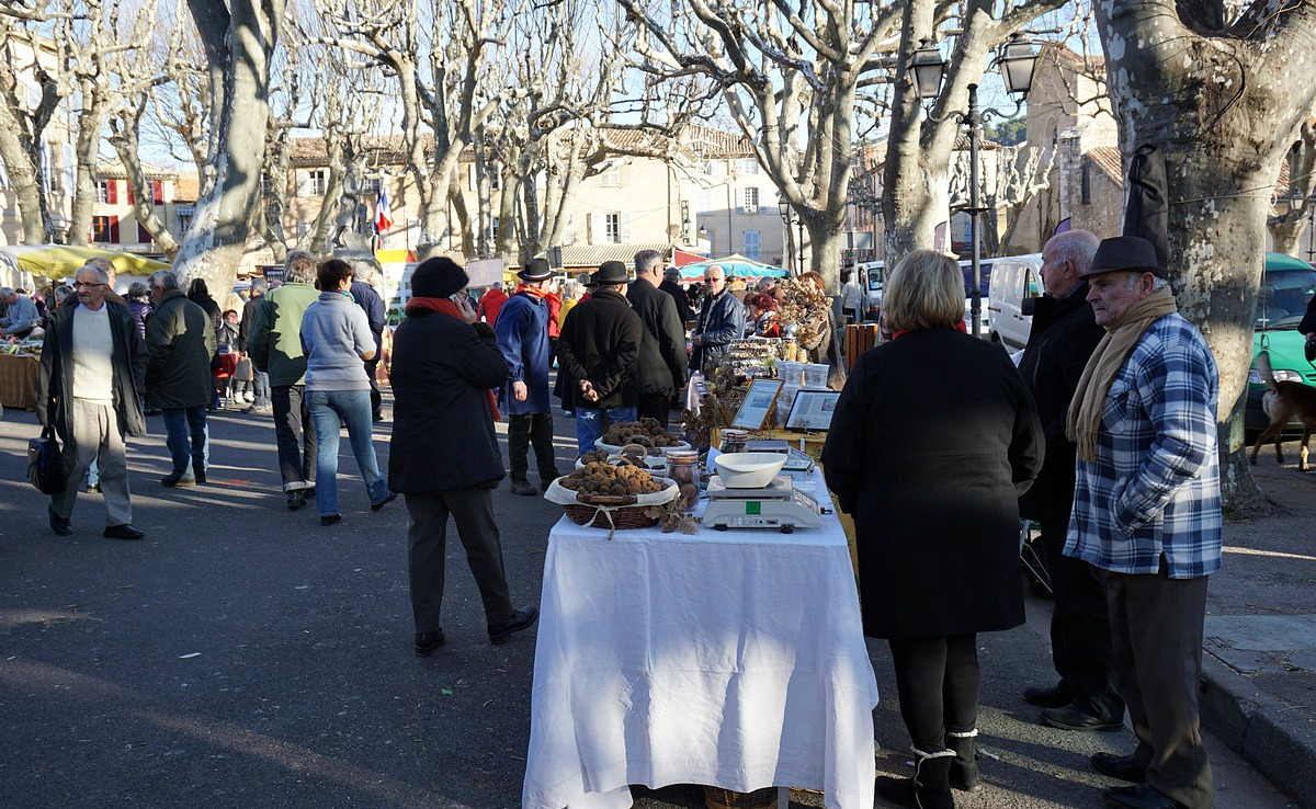Producer stands at Aups Truffle Festival