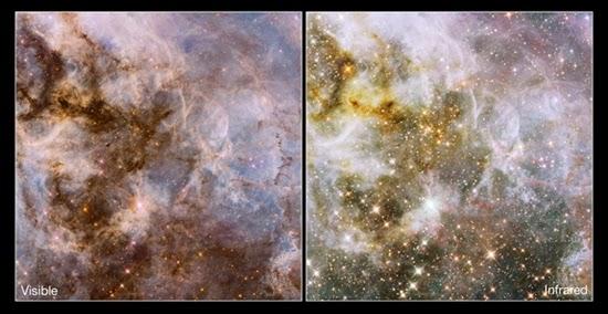 Nebula Tarantula Berisi Lebih Dari 80.000 Bintang