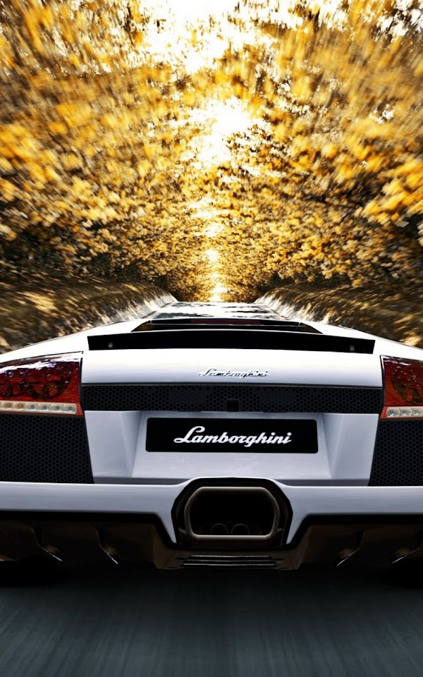 White Lamborghini Back Autumn Trees  Galaxy Note HD Wallpaper