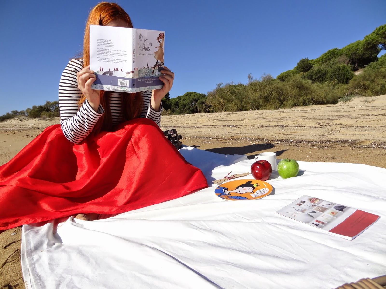 picnic mar