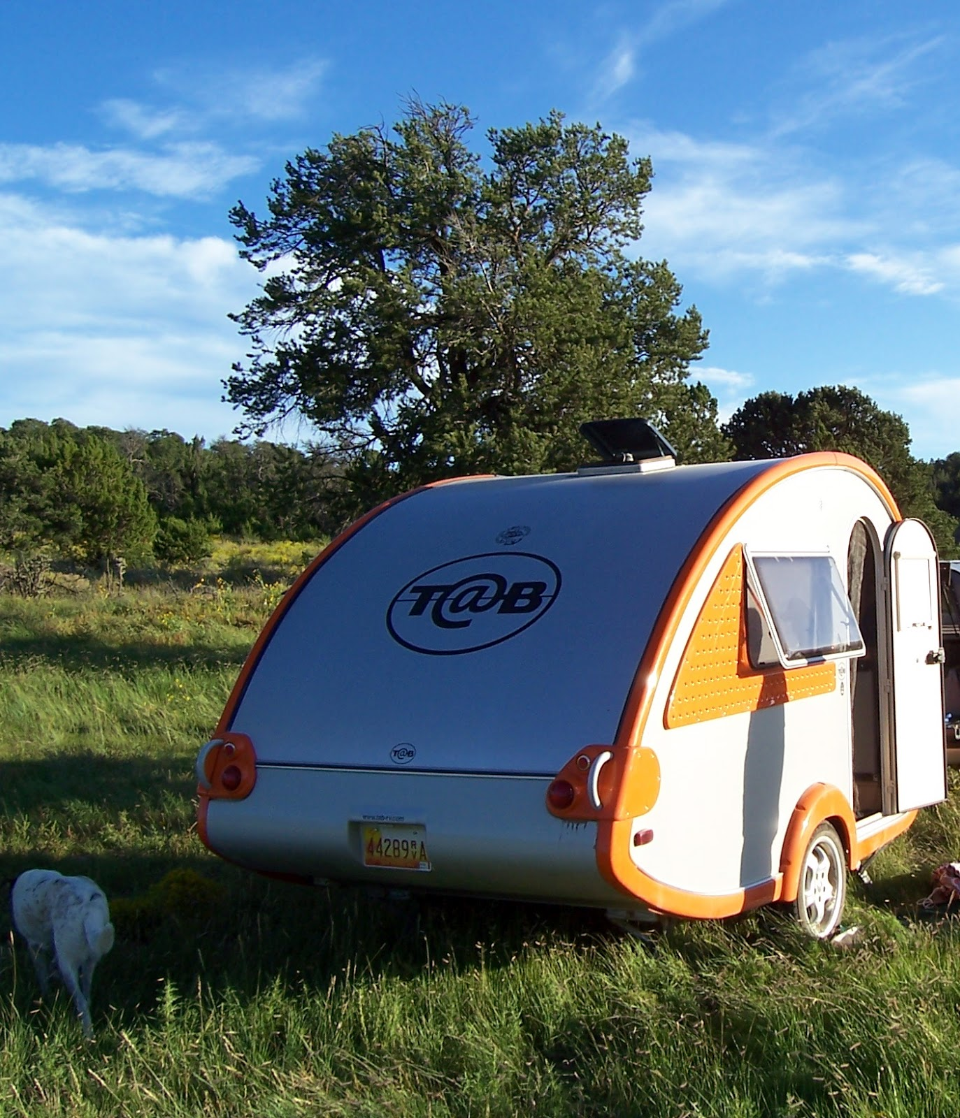 Camping Cabins National Forest Nm: Southern New Mexico Explorer: Jicarilla Mountains- Lincoln