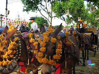 Feria de Sevilla 2014 Adornos para los equinos