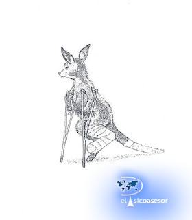 CAT-S – Test de Apercepcion Infantil Suplemento – Leopold Bellak-prueba-