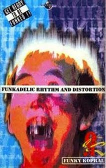 Funkadelic Rhythm and Distortion