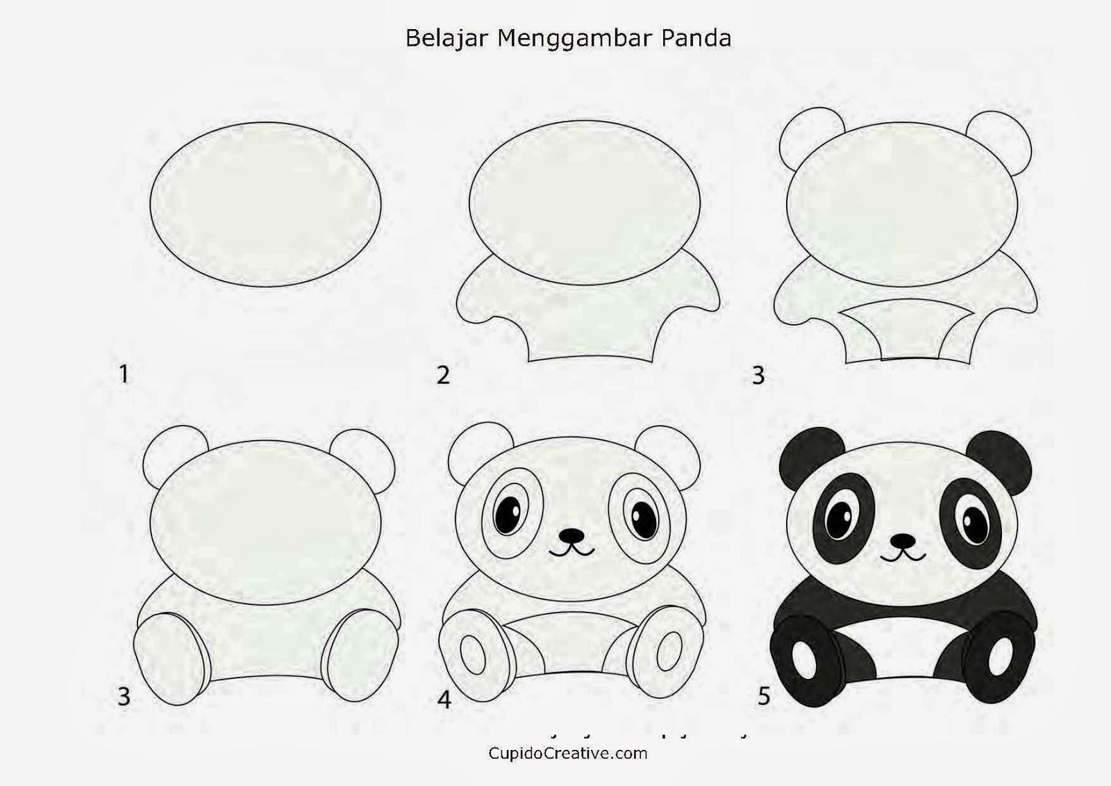 Image Berikut Adalah Langkah Menggambar Panda Untuk Si Kecil Download