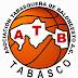 Basquetbol Tabasco: Conferencia de Prensa presentando calendarización de eventos.