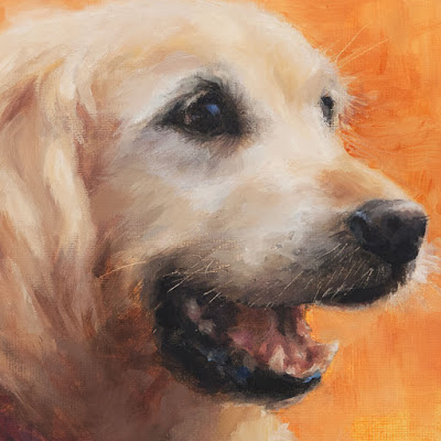 Golden Retriever portrait oil on canvas © Shannon Reynolds