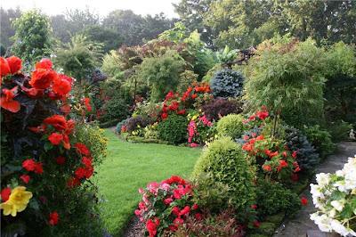 Я обожаю красивые сады и мечтаю