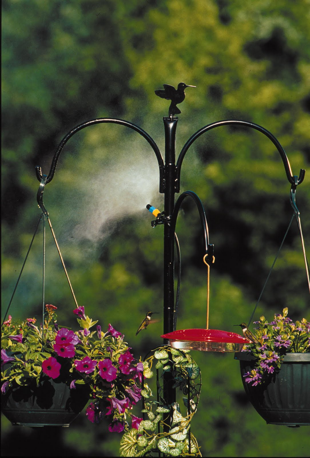the win image sweepstakes guide id now prize to bird feeder unlimited a crossley wild feeders closed pack ultimate birds enter