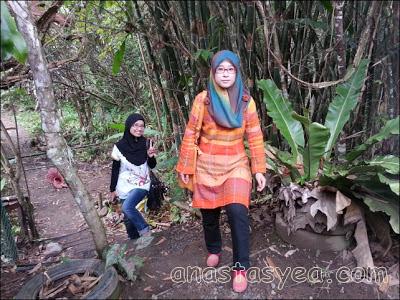 Rafflesia Arnoldii Blooming Kundasang