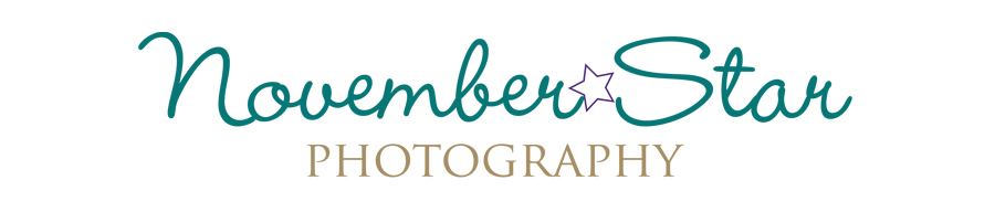 November Star Photography