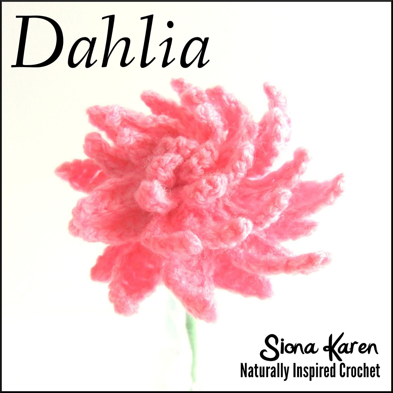 Crochet Flower Pattern Dahlia : Siona Karen : Crochet Pattern: Dahlia