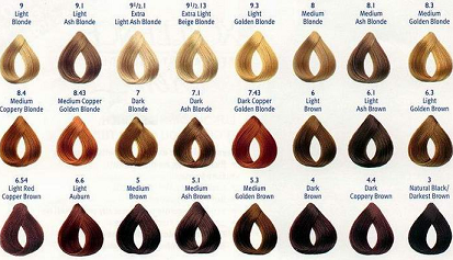 Diffe Shades Of Red Hair Color Chart With Reference To Donating Types