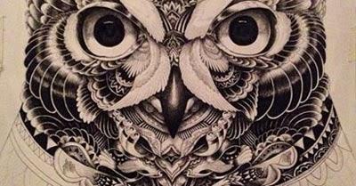 Significado e melhores fotos de tatuagem de coruja