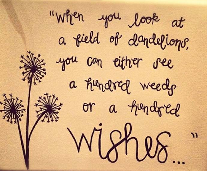 when you look at a field of dandelions, you can see a hundred weeds or a hundred wishes...