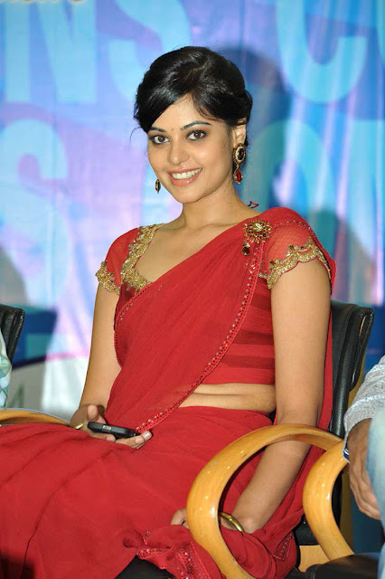 Bindu Madhavi In Full Saree 2