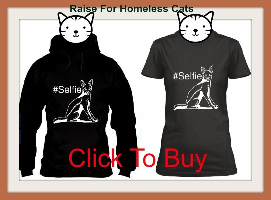 donate for animal shelter