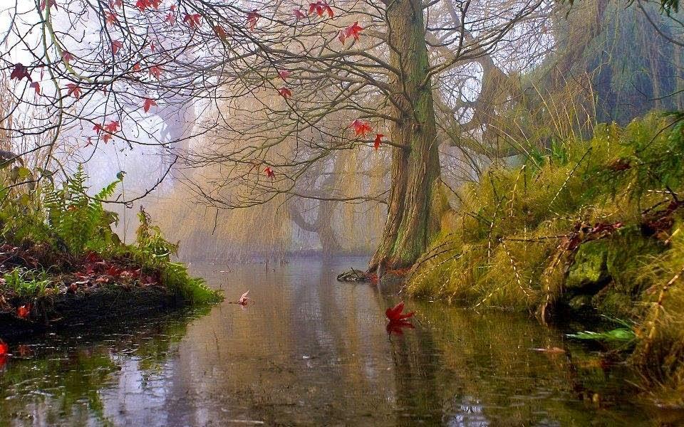 A Natureza é Amor