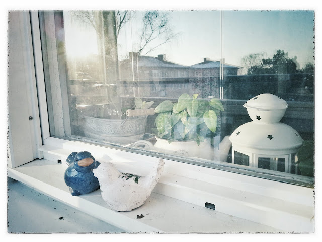 porcelain-birds, window, houses, sunset, light