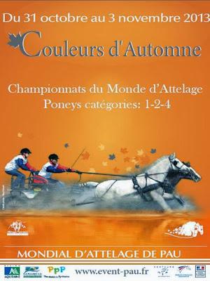 Couleurs d'Automne 2013 pau Championnats du Monde d'Attelage Poneys