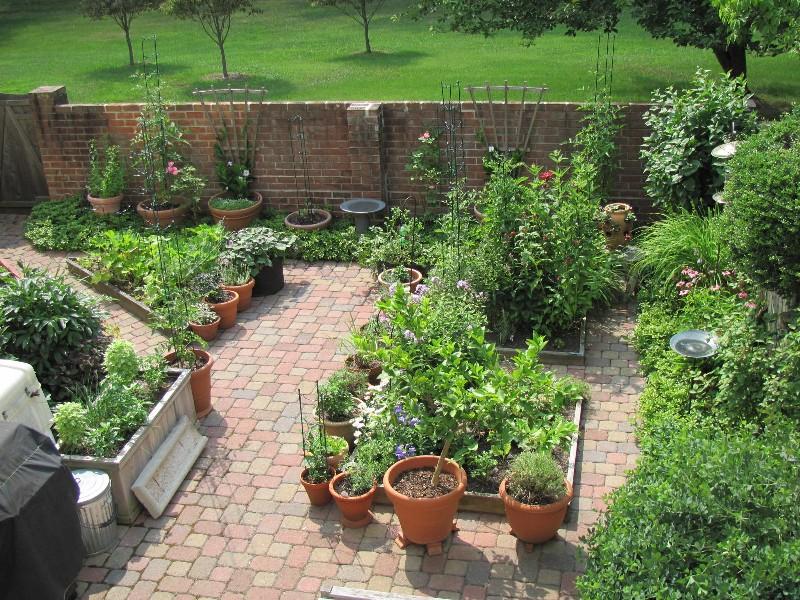 Grow It Eat It: Pat\'s 792-square foot garden