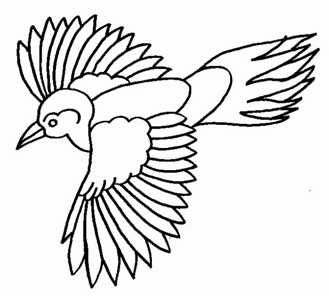 Contemporáneo Páginas Para Colorear De Aves Grandes Para Imprimir ...