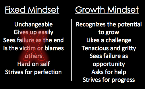 Growth and Fixed Mindset Graphic