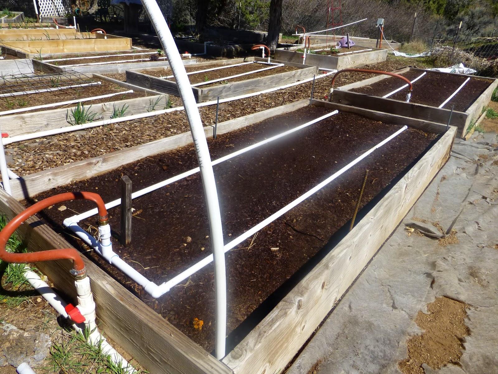 Growing Organic Choosing A Site Building Raised Beds