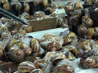 caracoles e caracoletas