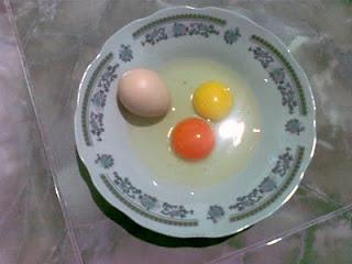 Perbedaan telur ayam kampung dengan telur ayam arab