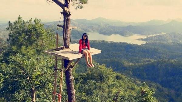 Pemandangan Waduk Sermo Dari Atas Pohon