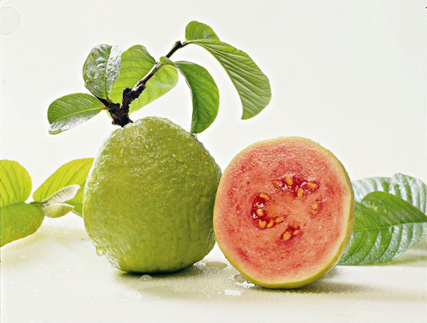 Top Health Benefits Of Eating Guava Fruit