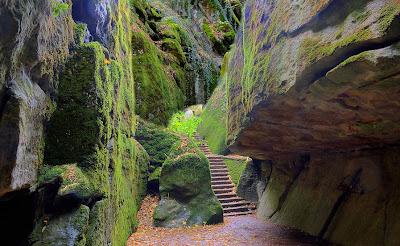 Laberintos del paraíso - Labyrinths of paradise