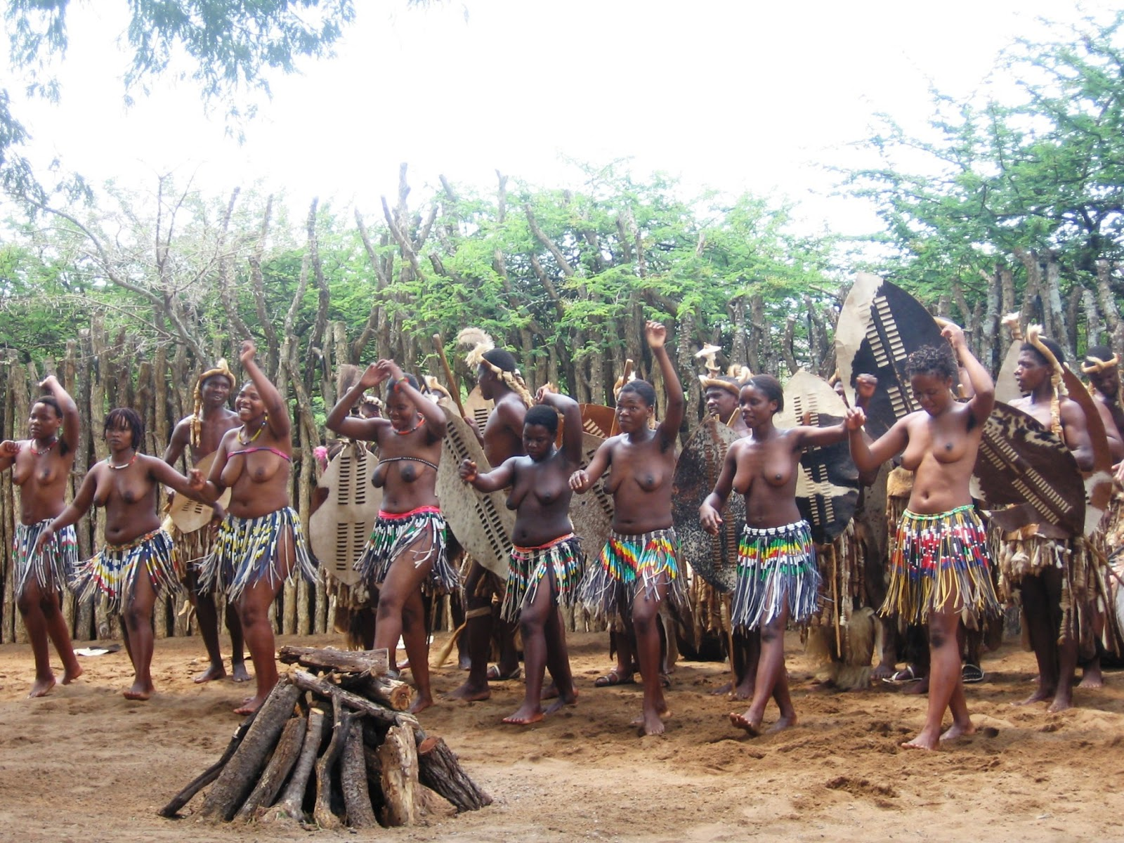 Zulu - Dance of the Vi...