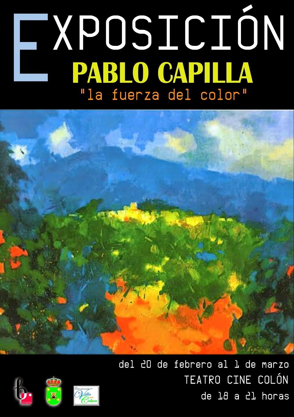 LA FUERZA DEL COLOR DE PABLO CAPILLA
