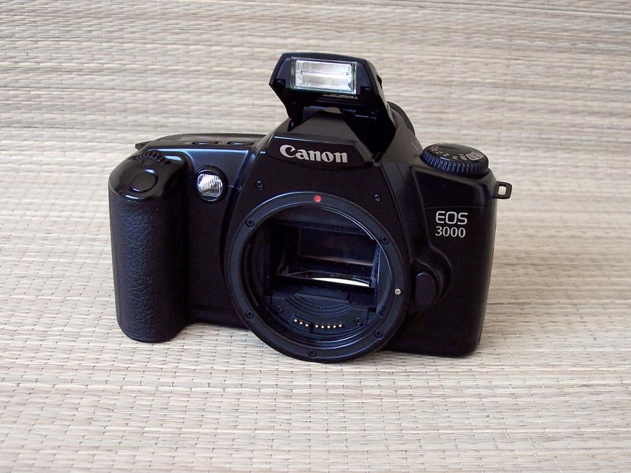 fotografia riflessiva canon eos 3000 1999 rh fotoriflessiva blogspot com Canon EOS Rebel T3 Canon EOS 6D