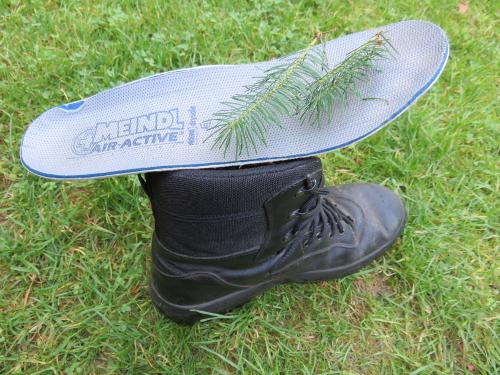 Schoen met inlegzool en takjes Douglasspar.