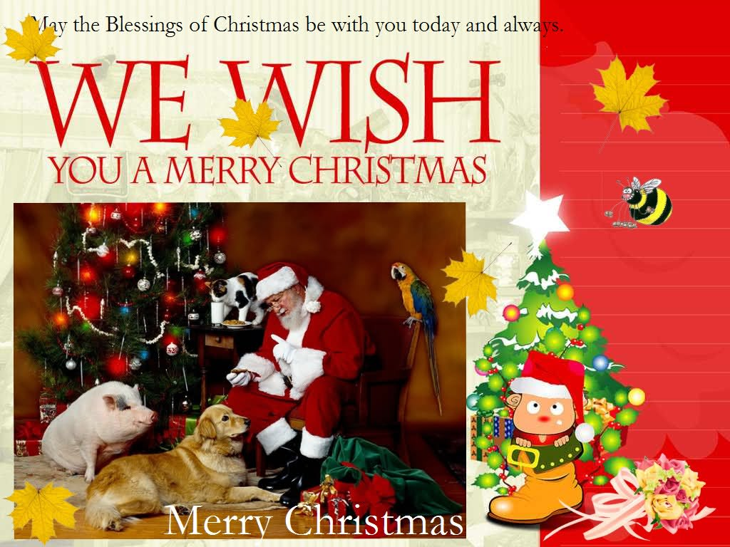 Free picture photographydownload portrait gallery christmas christmas greeting cards christmas greeting card pictures happy christmas greetings christmas greeting cards free download animated christmas greeting m4hsunfo