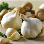 Garlic nutritious treat diabetes