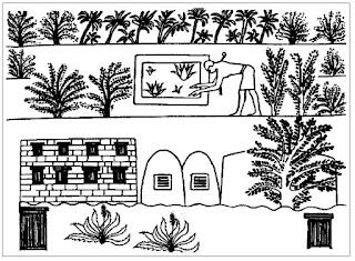 Aloe Vera, usos del Aloe Vera, imagenes de Aloe Vera, propiedades del Aloe Vera