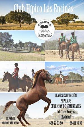 Clases de Equitación en Badajoz