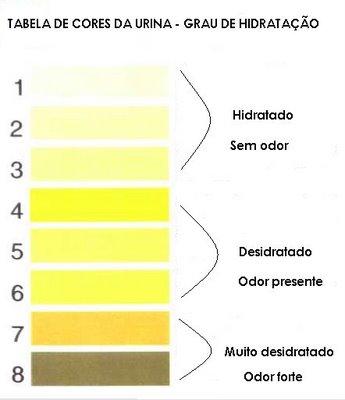 Exame de gravidez pela urina