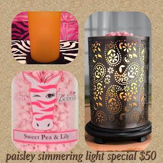 Pink Zebra Paisley Simmering Light image