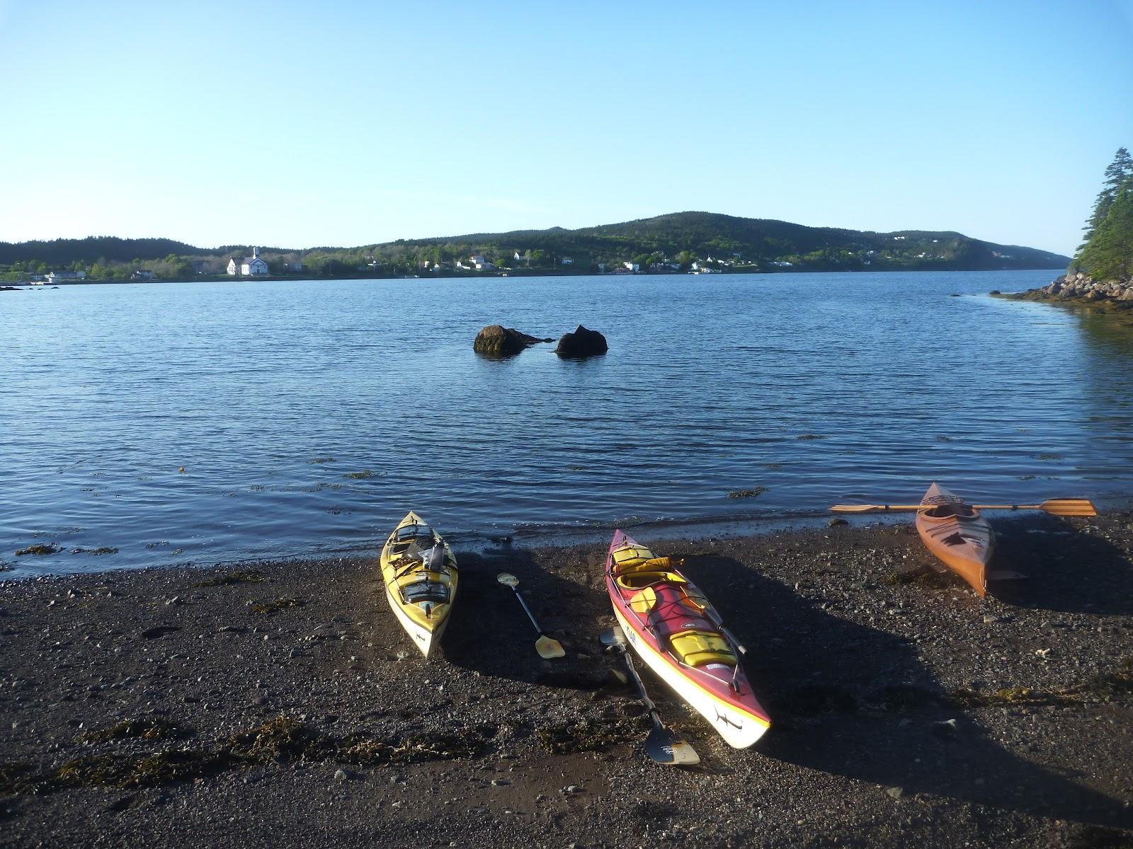 newfoundland sea kayaking avondale in the evening. Black Bedroom Furniture Sets. Home Design Ideas