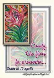 Il Candy blog della primavera di Elena