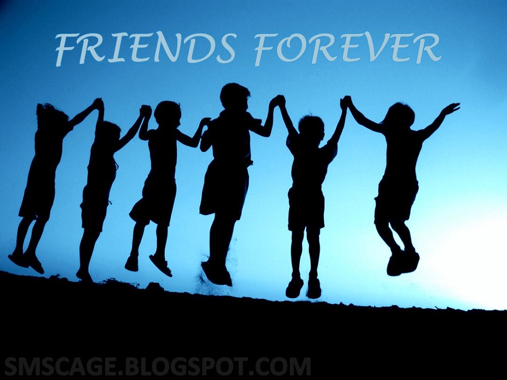 International friendship day essay