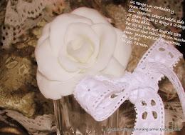 Con tu rosa quiero desearte mucha salud y pronta recuperación, amiga.