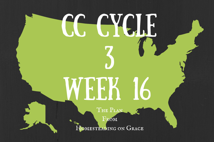 CC Cycle 3 Week 16 ~ The Plan from Homesteading on Grace